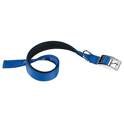 Ferplast Collar Nylon Daytona C 40 63 Azul 🔥