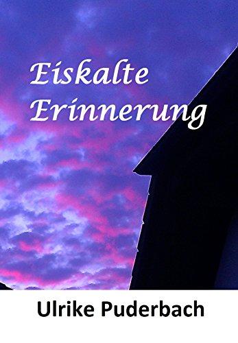 Eiskalte Erinnerung (Hannover-Krimis 1)