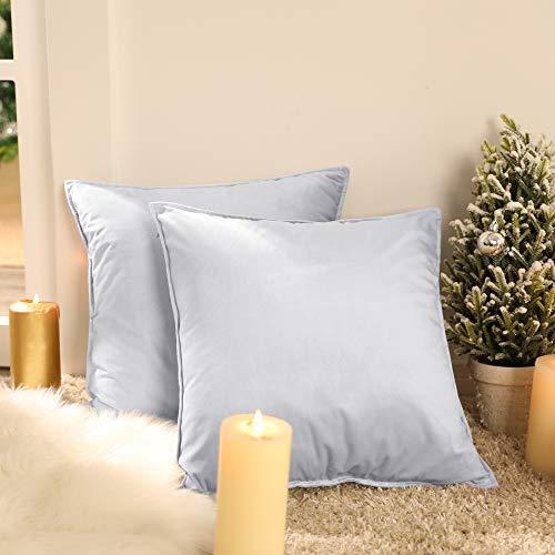 Deconovo Fundas para Cojines de Almohada del Sofá Cubierta Suave Decorativa Protector para Hogar 65 x 65 cm 2 Piezas Gris Claro