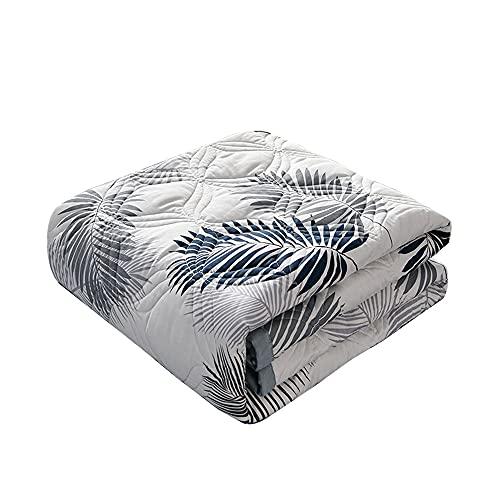 Surwin Tagesdecke Bettüberwurf aus Mikrofaser, Wattiert Gesteppt Bettdecke Sommer Dünne Steppdecke für Doppelbett Einzelbett Muster (Palmblatt,150x200cm)