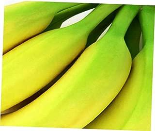 ELLA Plant Musa acuminata