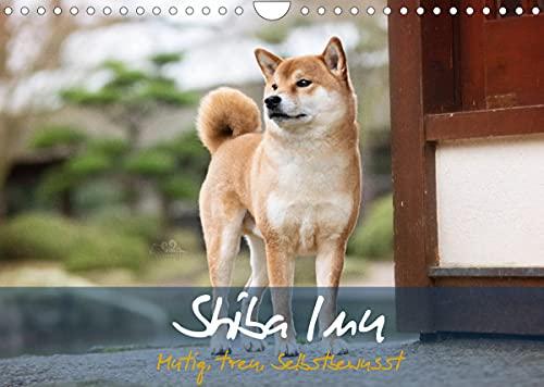 Shiba Inu - mutig, treu, selbstbewusst (Wandkalender 2022 DIN A4 quer)
