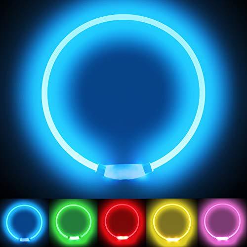 LMLMD Leuchthalsband Hund, LED Hundehalsband USB Wiederaufladbar, Glowing Pet Hundehalsband fur Nachtsicherheit, Fashion Light Up Hundehalsband für Kleine Mittelgroße Große Hunde Blau