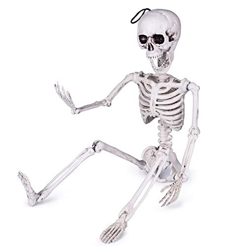 FUN LITTLE TOYS 24 Inches Halloween Posable Skeleton, Full Body Skeleton Movable Joints, Plastic Bones for Halloween Decorations