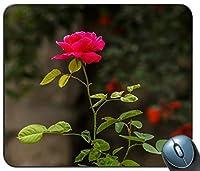 赤いバラのセレクティブフォーカス写真パーソナライズされた長方形マウスパッド、印刷された滑り止めゴム快適なカスタマイズされたコンピューターマウスパッドマウスマットマウスパッド