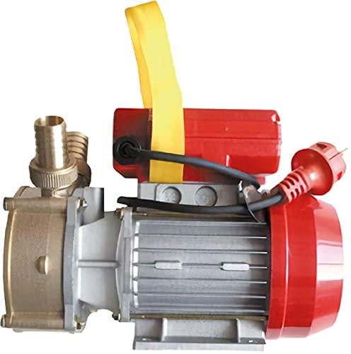 Rover 20 Spazzola elettrica Pompa Acqua 0,5 PS