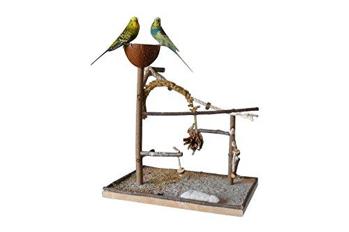 Vogelgaleria Vogelspielplatz aus Natur Holz mit Abnehmbarer Futterschale | Ideales Spielzeug bei Freiflug für Wellensittich Nymphensittich | Vogelspielzeug