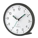 Grandi numeri (circa 9 mm) Funzione Snooze (5 minuti) Dimensioni 110 x 110 x 52 millimetri Retroilluminazione LCD (su pressione di un tasto sopra)