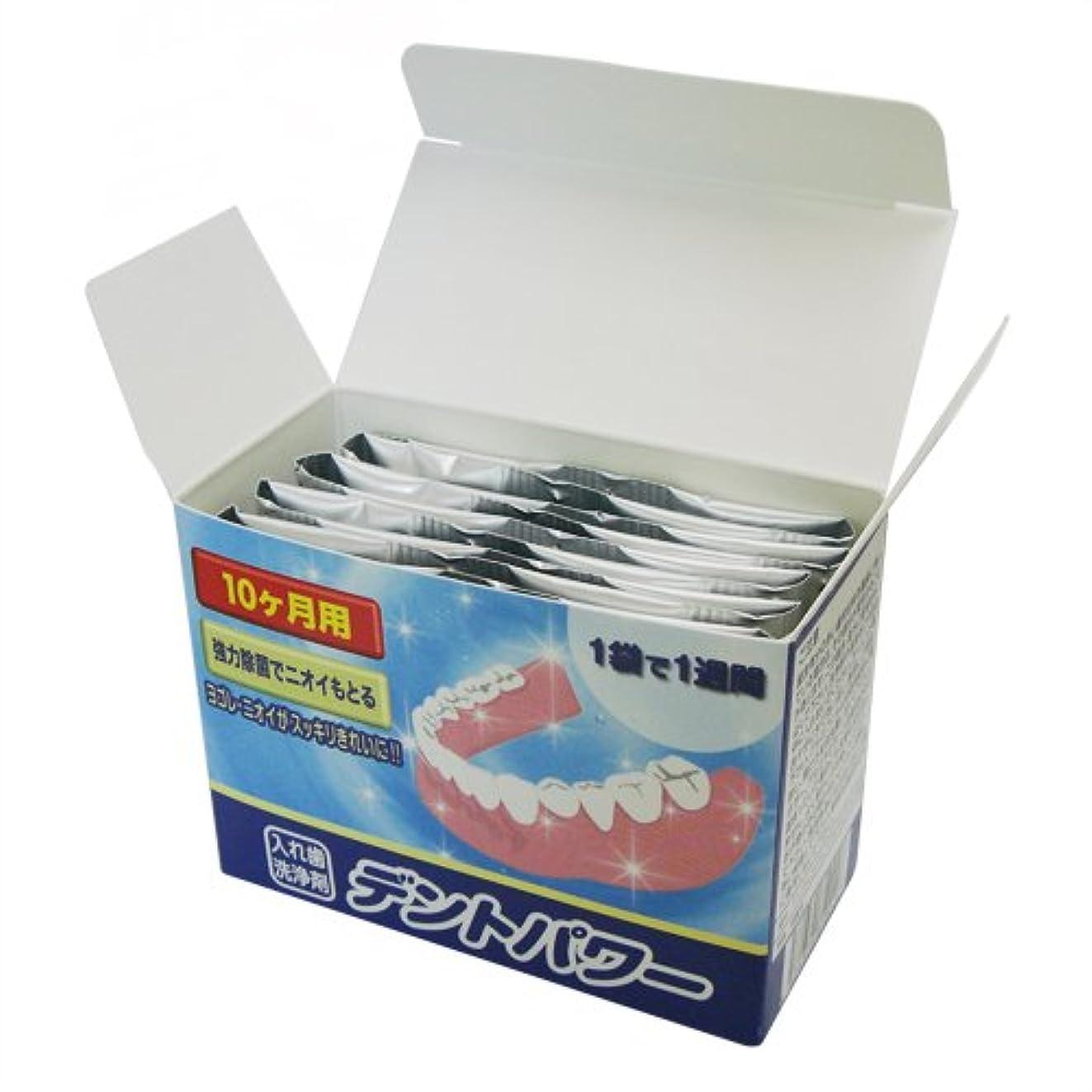 狂気飾り羽豊かなデントパワー 入れ歯洗浄剤 10ヵ月用(専用ケース無し)