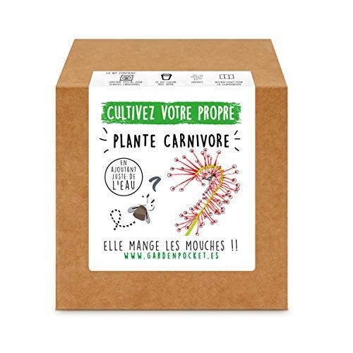 Garden Pocket - Kit de Culture de PLANTE CARNÍVORE DROSERA