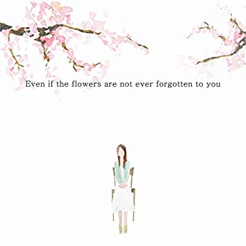 Even If the Flowers are Not Ever Forgotten to You