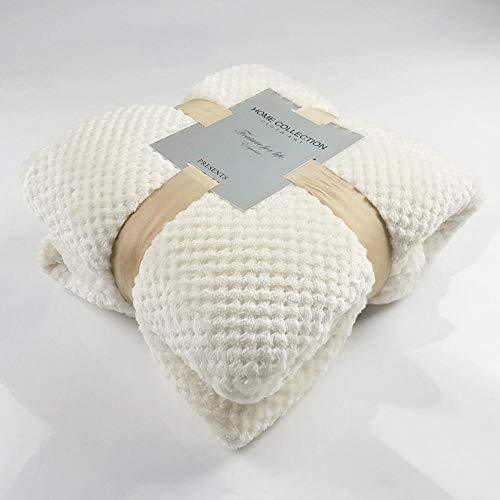 Warme Luxus Reine Mesh Decke Baby Fleece Decke Handtuch Sofa Decke Ananas Grill Flanell Werfen Für Zuhause Schlafsofa Bettlaken-78X90inch