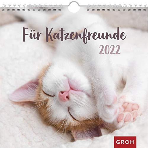 Für Katzenfreunde 2022: Wandkalender mit Monatskalendarium
