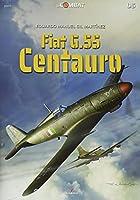 Fiat G.55 Centauro (In Combat)