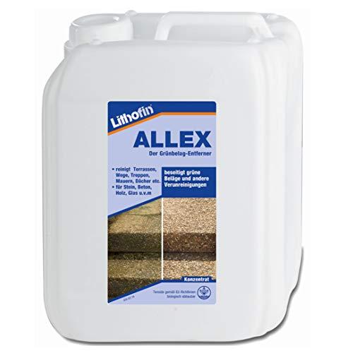 Lithofin Allex Grünbelag Entferner 5 Liter - Ideal zum vorbeugen gegen grüne & rutschige Beläge