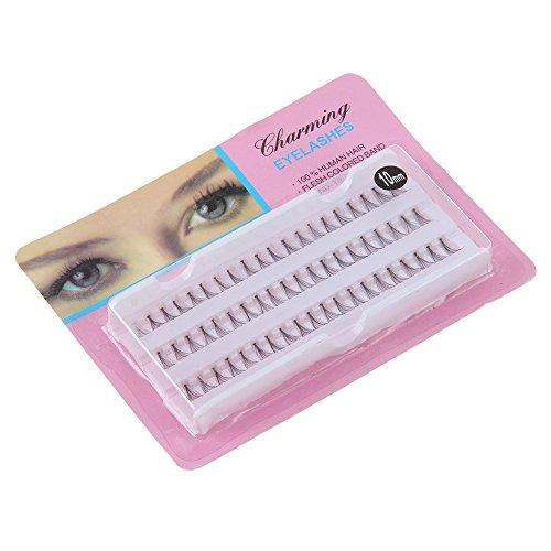 60 stand Faux Individuel Cils BZLine Premium Cils de coin évasés Outils de Maquillage