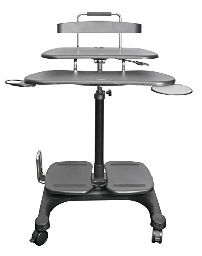 Kantek Sit to Stand Mobile Computer Workstation with LCD Monitor Mount Pole (STS240)