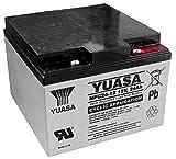 Yuasa - Batteria piombo AGM NPC24-12 12V 24Ah - Batteria/e