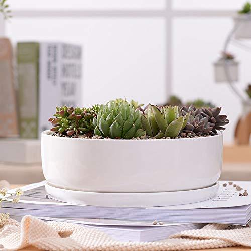 YTLJJ Macetero Moderno de Cerámica, Diseño Simple Cerámicos Planta Maceta Suculento Cactus,...