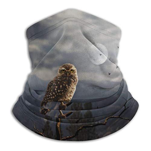 Owl and Moon Face Mask Bandana for Sun Dust Wind Headband for Men Women Neck Gaiter Rave