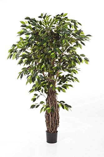 artplants.de Kunst Ficus PHIPSO, 1600 grüne Blätter, üppiger Naturholzstamm, Deluxe, 180cm - Deko Ficus - Künstlicher Baum