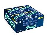 Airwaves Kaugummi | Menthol & Eucalyptus | Blau, zuckerfrei | 20 x 3 Packungen (20 x 3 x 10 Dragees)