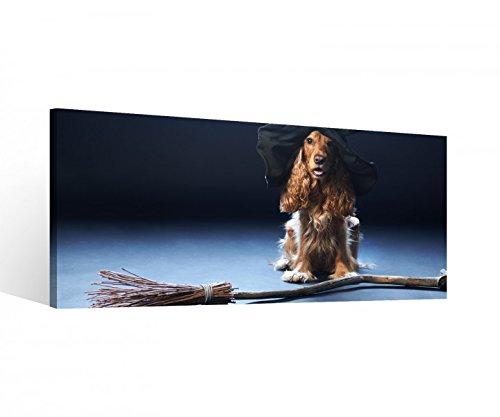 Leinwand 1Tlg Hund Hexe Hut Hexenbesen Halloween Leinwandbilder Bild Bilder Holz fertig gerahmt 9S370, 1 Tlg BxH:80x40cm