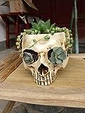 L NINESH Plantas Artificiais Pentole per Orchidee Huerto Verticale Maceta Blanca Balkon Decorazione Cranio Testa Vaso Fioriera Fioriere