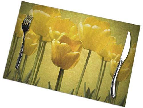 Beryl Shop Manteles Individuales de Alfombra de Tulipanes Amarillos para Mesa de Comedor de Cocina, Alfombrillas Lavables Alfombra de Aislamiento termico para Mesa de Comedor de Cocina