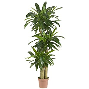 Nearly Natural 57in. Corn Stalk Dracaena Silk Plant (Real Touch), 62.5″ x 9″ x 9″, Green