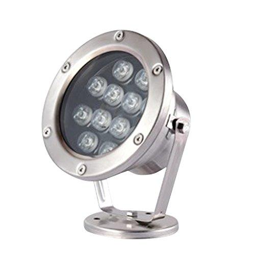 perfk Lámpara de Piscina Sumergible Sumergible para Estanque de 7 Tipos, Lámpara de Piscina para Estanque de Peces, 12 W - Rojo, Individual