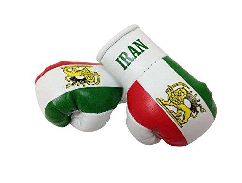 Sportfanshop24 Mini Boxhandschuhe Iran alt/PERSIEN, 1 Paar (2 Stück) Miniboxhandschuhe z. B. für Auto-Innenspiegel
