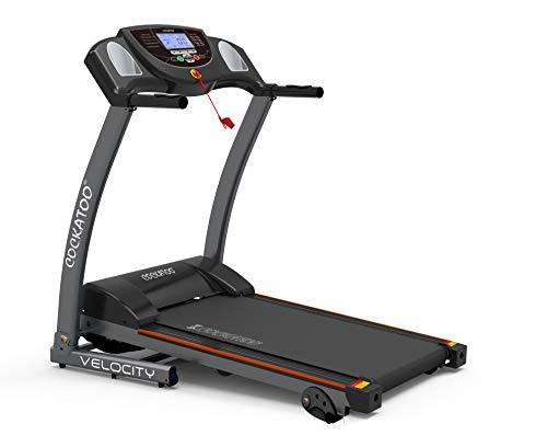 Cockatoo Velocity Steel DC Motorized Treadmill (Free Installation Assistance)
