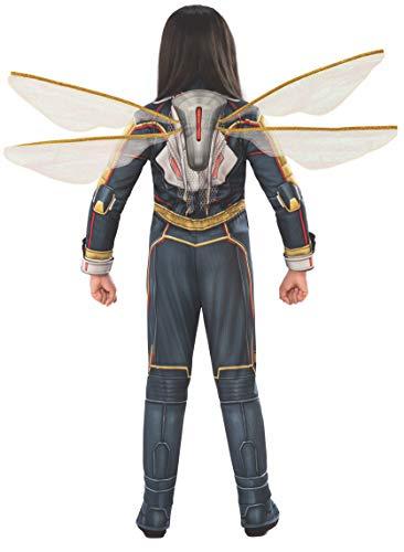 Rubie's Women's DC Comics Wasp Wings, One Size