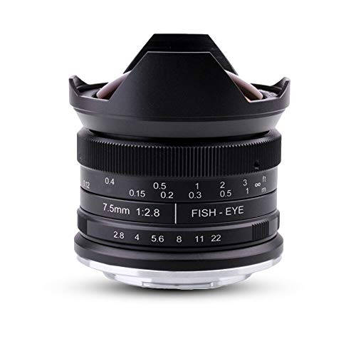 7.5mm F2.8 APS-C Manual Fisheye Fixed Focus Lens with Protective Lens Cap, Removable Lens Hood and Carrying Bag for Olympus Panasonic Micro Four Thirds MFT M4/3 Cameras