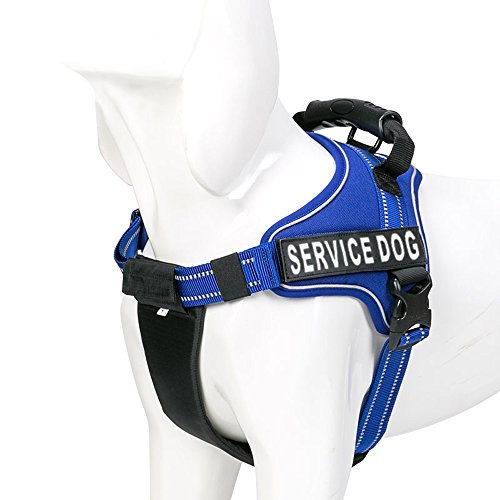 Chai's Choice Service Dog Vest Harness Best with 2 Reflective Service Dog Patches. Matching 3M Reflective Leash Available. See Sizing Chart at Left! (Medium, Royal Blue)
