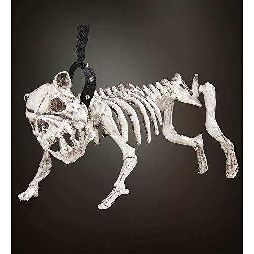 WIDMANN Perro Esqueleto con Correa Halloween , color/modelo surtido