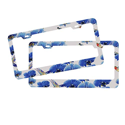 Moslion Blue Orchid Flower License Plate Frame Hummingbird Singing Bird Animal Colorful Art Fashion Novelty Vanity Vehicle License Plate Front Auto Tag for Car Truck RV Trailer 6 x 12 inch