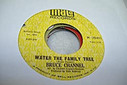 BRUCE CHANNEL 45 RPM Water The Family Tree / California