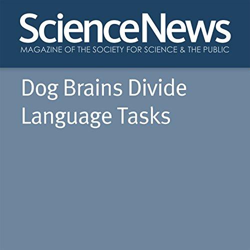 Dog Brains Divide Language Tasks cover art
