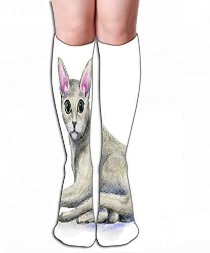 """Voxpkrs Calcetines delgados altos Calcetines largos de compresión graduada alta para hombres, mujeres y niñas 19.7""""(50 cm) ruso azul foto de gato ruso"""