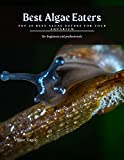 Best Algae Eaters: Top 20 Best Algae Eaters for...