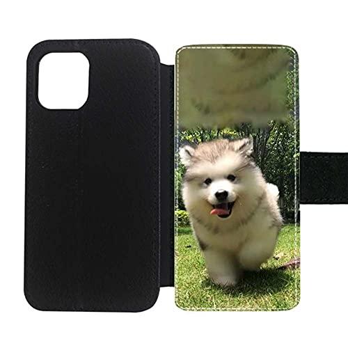Interesante Chicas Conchas De Plástico Compatible con 6.7 Inch iPhone 12 Pro MAX Impresión Siberian Husky 5