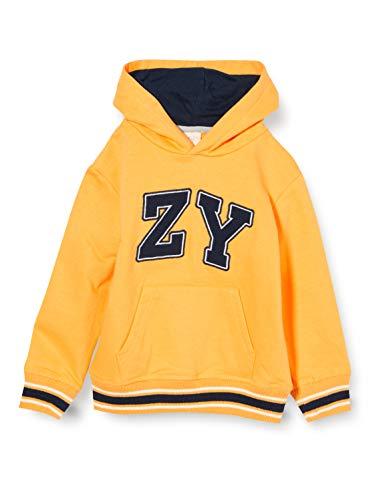 ZIPPY ZB0203_470_11 Suéter, Banana 13-0947 TC, 13/14 para Niños