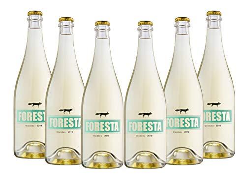 Vins&Co Barcelona Vino Blanco Macabeu Ancestral 2019 – Pack 6 Botellas – Variedades: Macabeu/Viura – Selección Vins&Co - 750 ml