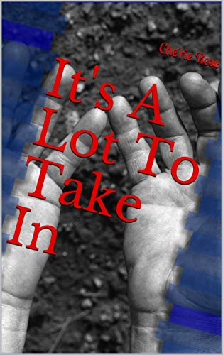It S A Lot To Take In Ebook Rose Che Rie Amazon Co Uk Kindle Store