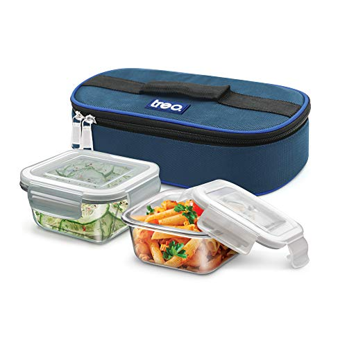Treo by Milton Health First Square Glass Tiffin Box with Cover, 300ml, Set of 2, Transparent Glass