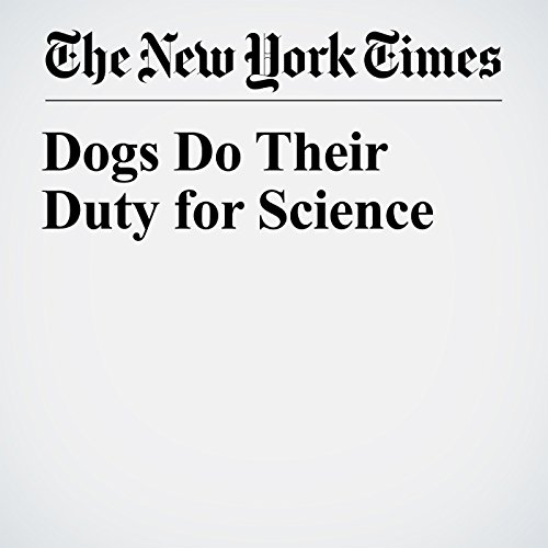 Dogs Do Their Duty for Science copertina