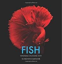 Fish Mini Wall Calendar 2019: 16 Month Calendar