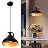 Depuley Pendelleuchte Vintage, Retro Hängeleuchte Metall, Pendellampe LED Deckenlampe Ø30cm E27 Fassung für max. 60W, Schwarz-Gold
